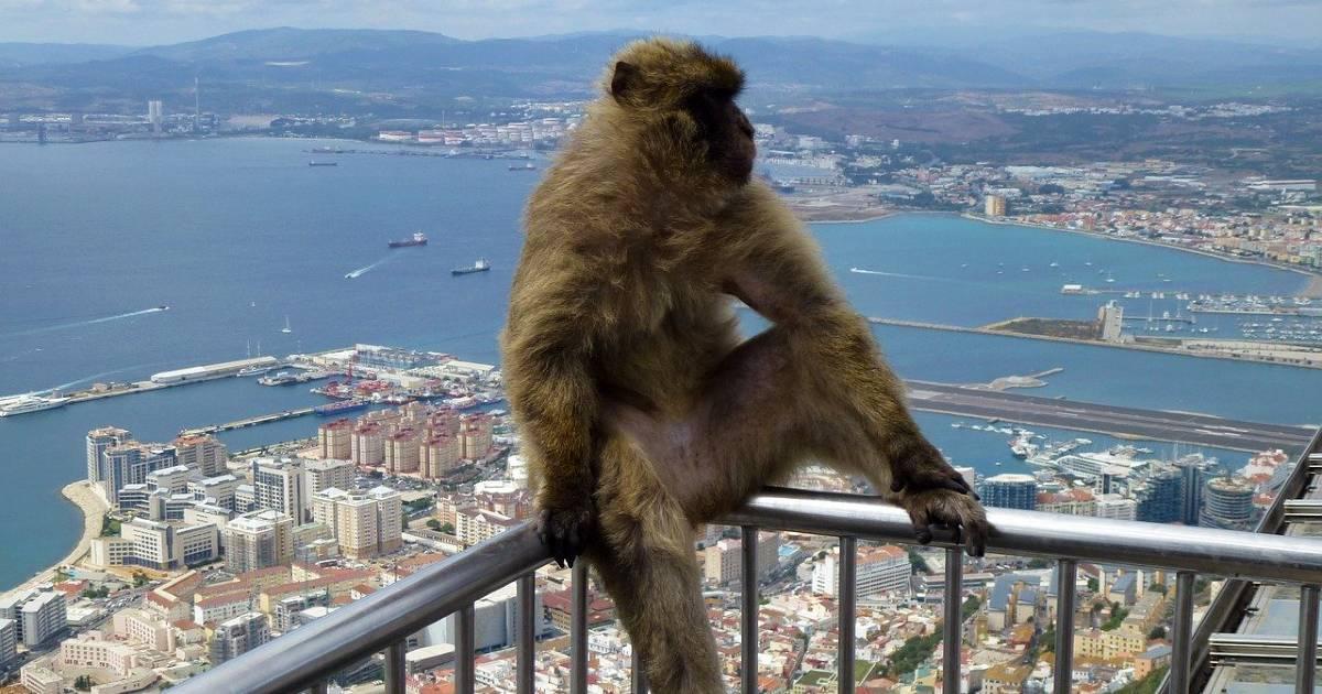 «Налоговый рай» на Гибралтаре закончился