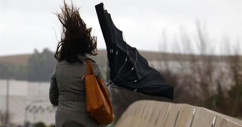 Из-за сильного ветра в Мадриде закрыты восемь парков
