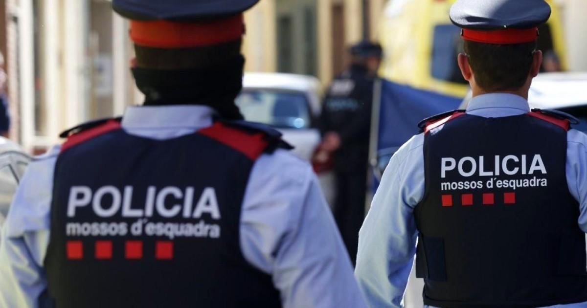 В Каталонии раскрыта преступная организация продававшая фальшивые водительские удостоверения