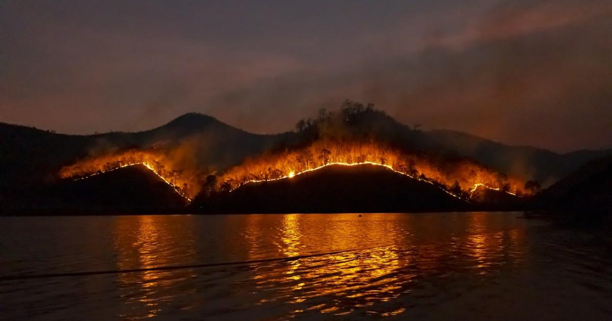 Пожар на юге Тенерифе распространился на 1500 гектаров соснового леса