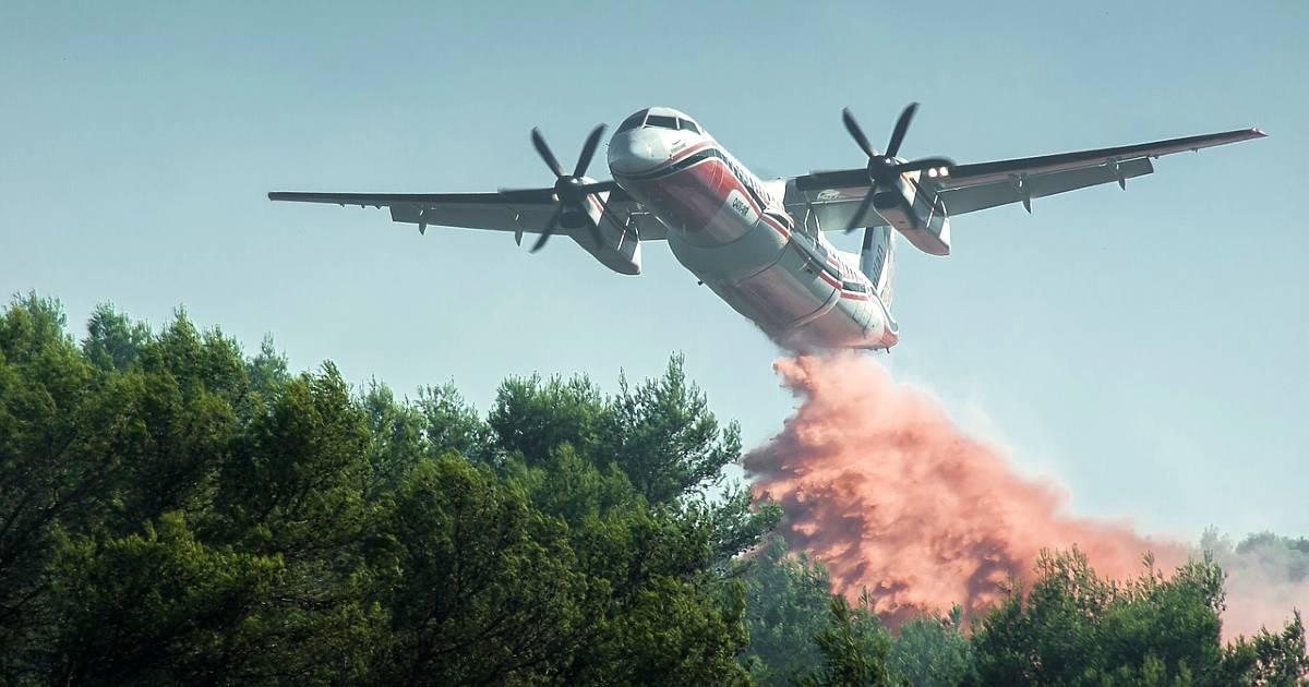 В 2021 году в сообществе Мадрид зарегистрировано 259 лесных пожаров