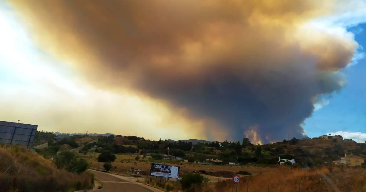 На пожаре в Sierra Bermeja в Малаге погиб пожарный
