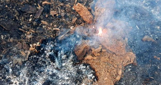 Пожар в Сьерра-Бермеха спустя месяц все еще не потушен